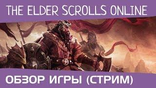 The Elder Scrolls Online. Стрим от DiRaven (обзор игры, stream)