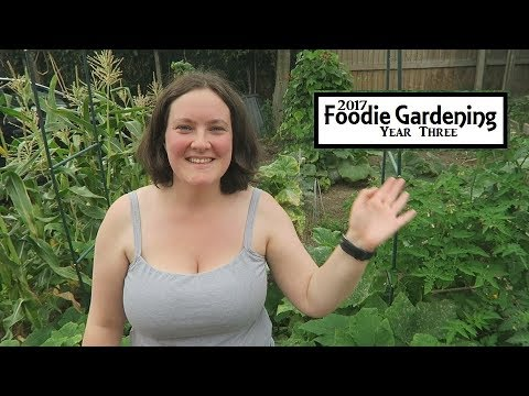 Laura's Organic Kitchen Garden Tour August