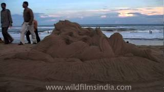 Newly Laid Out Sand Sculpture In Puri Beach, Orissa