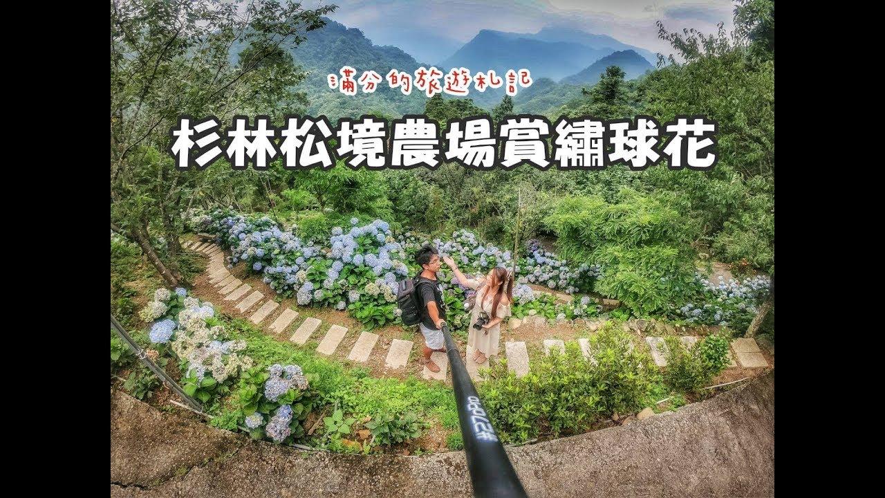 苗栗景點》杉林松境農場│苗栗賞繡球花好地方 - YouTube