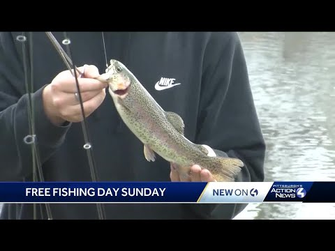 'Fish For Free Day' In Pennsylvania: No Fishing License Required