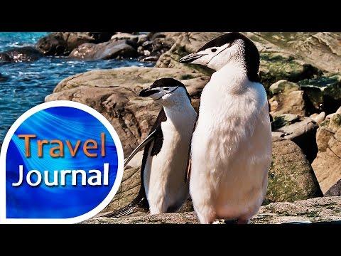 Travel Journal (178) - Antarktické dobrodružství s Martem Eslemem