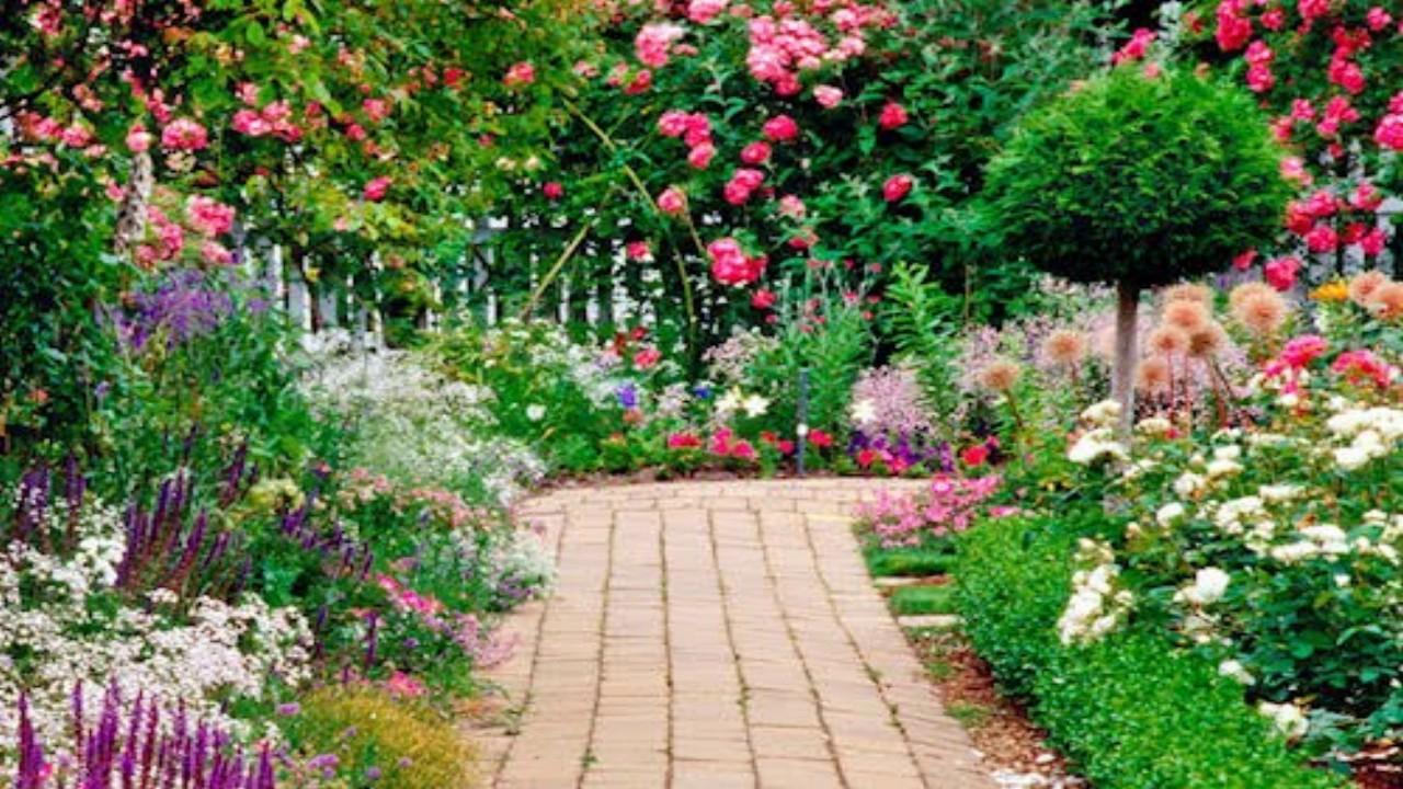 Sabidur a femenina youtube - Casas con jardines bonitos ...