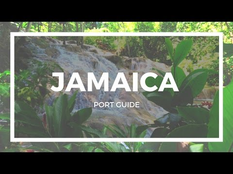 THINGS TO DO IN PORT | Jamaica