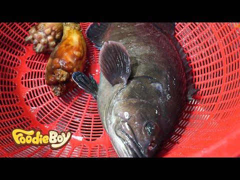Raw Sevenband Grouper / Korean Street Food / Yeosu Specialty Seafood Market , Yeosu Korea
