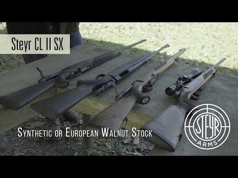 Steyr Arms CL II SX