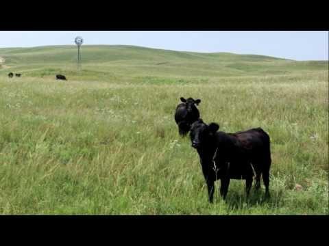 Nebraska - A Ranch in the Sandhills