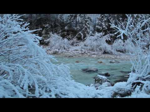 Relaxing Sound of a River 1 Hour / Cold Frosty Morning by The River