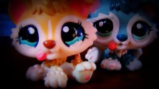 "✯ LPS: Dancing Queen (Season 2) (Episode #1: ""Twins!?"") **SEASON PREMIERE** ✯"