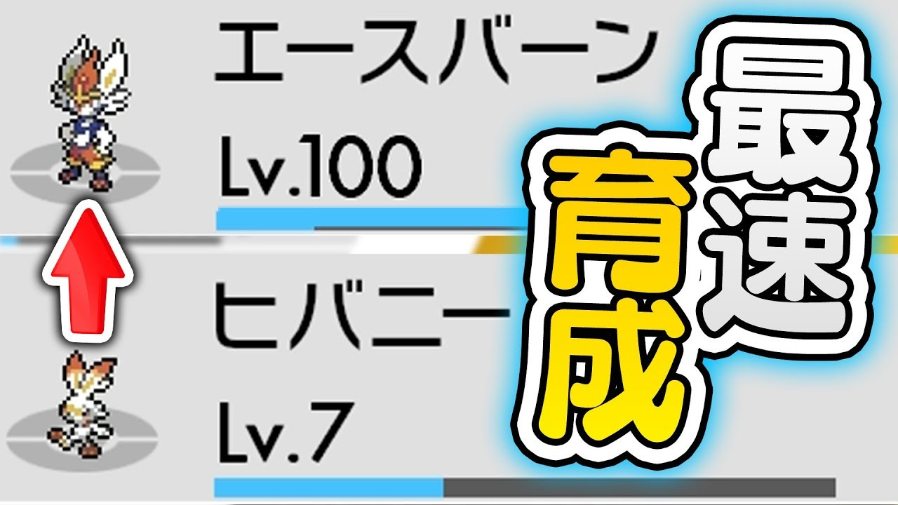 ポケモン 剣 盾 レベル 上げ