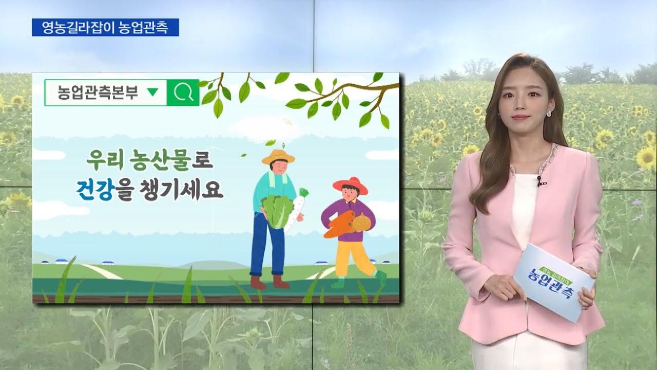 [농업관측] 7월 엽근채소·양념채소