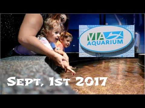 VIA Aquarium Rotterdam N.Y. (Sep, 1st 2017)