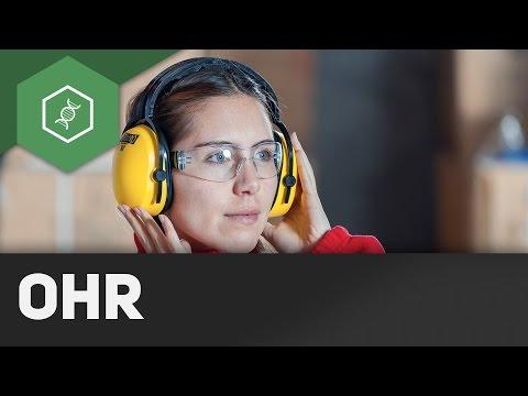 Gehör - Organe des Menschen: Das Ohr ● Gehe auf SIMPLECLUB.DE/GO & werde #EinserSchüler