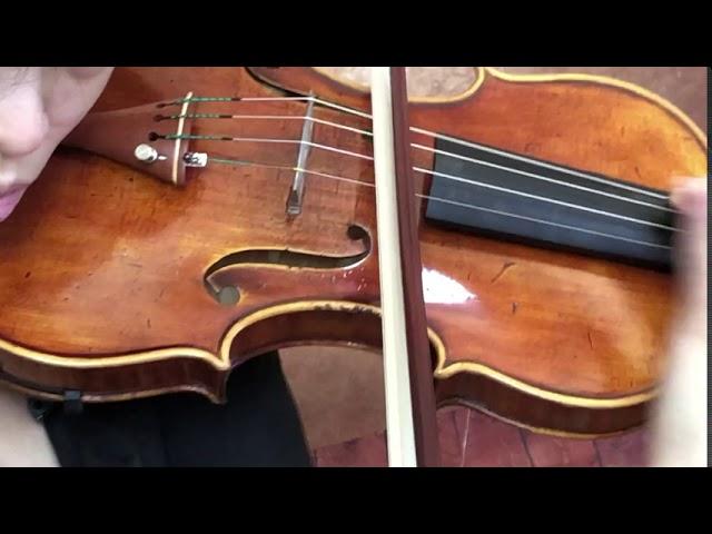 Ifstrings Master Build deluxe Wood #348 Guarneri del Gesu 1740