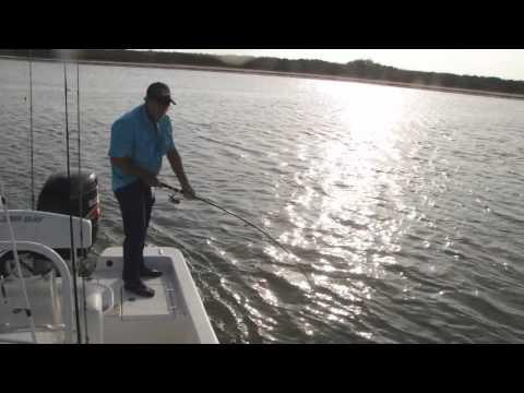 Land Cut Fishing Adventure