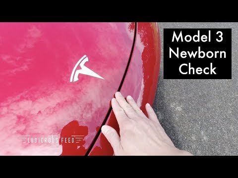 Tesla Model 3 Newborn Check Delivery Inspection Australia | Ludicrous Feed | Tesla Tom