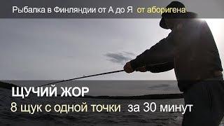 Щучий жор. 8 щук з однієї точки за 30 хвилин. Риболовля у Фінляндії