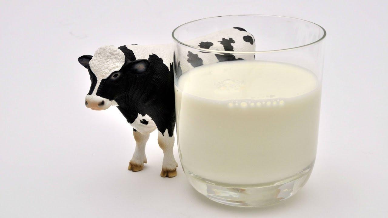Résultats de recherche d'images pour «lait»