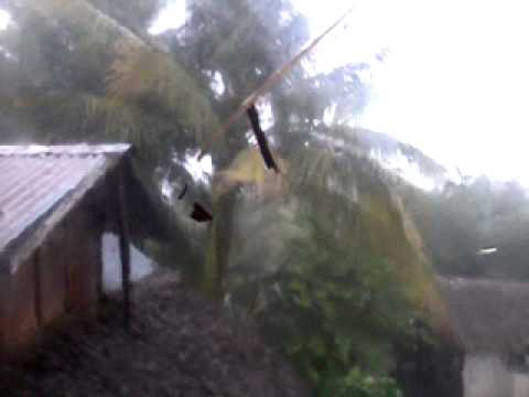Bagyong Ofel strucks Eastern Visayas