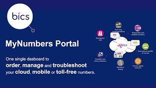BICS MyNumbers Portal How To Order Numbers