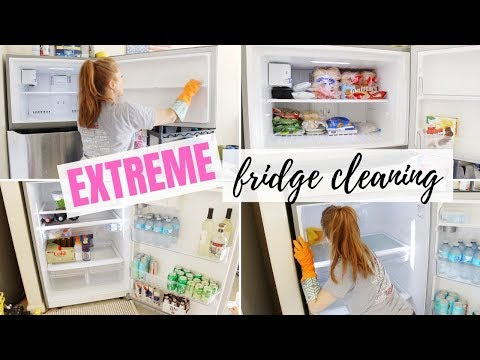 EXTREME FRIDGE CLEANING // CLEAN WITH ME // GROSS & DIRTY FREEZER // DENAE LYNN