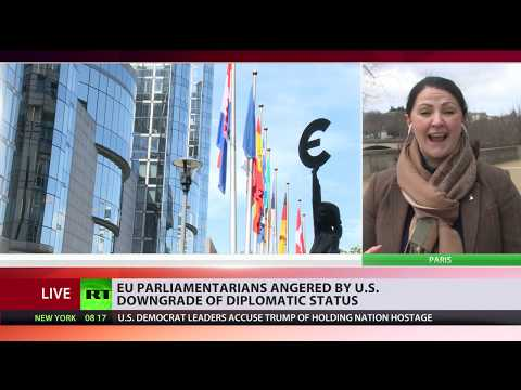 From 'nation-state' to 'intl organization': US downgrades EU ambassador's diplomatic status