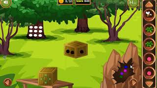 8b Toucan Couple Escape
