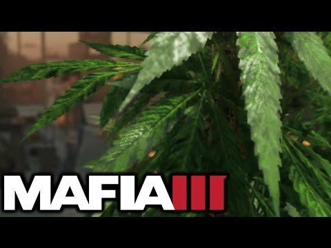 GROWING WEED (MAX LEVEL) | Mafia III Faster, Baby (#10)