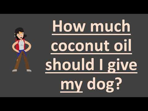 how-much-coconut-oil-should-i-give-my-dog-?
