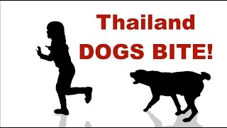 Dogs in Thailand - Soi Dogs, Pet Dogs, ANY DOGS - Thailand Living