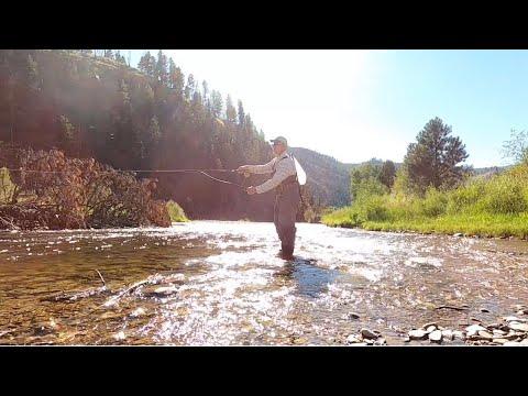 Fly Fishing Rock Creek, Montana | Unmatched Beauty, LOADS Of Fish