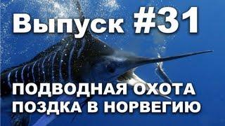 Выпуск 31: Подводная охота видео 2013. Моя поездка в Норвегию часть1