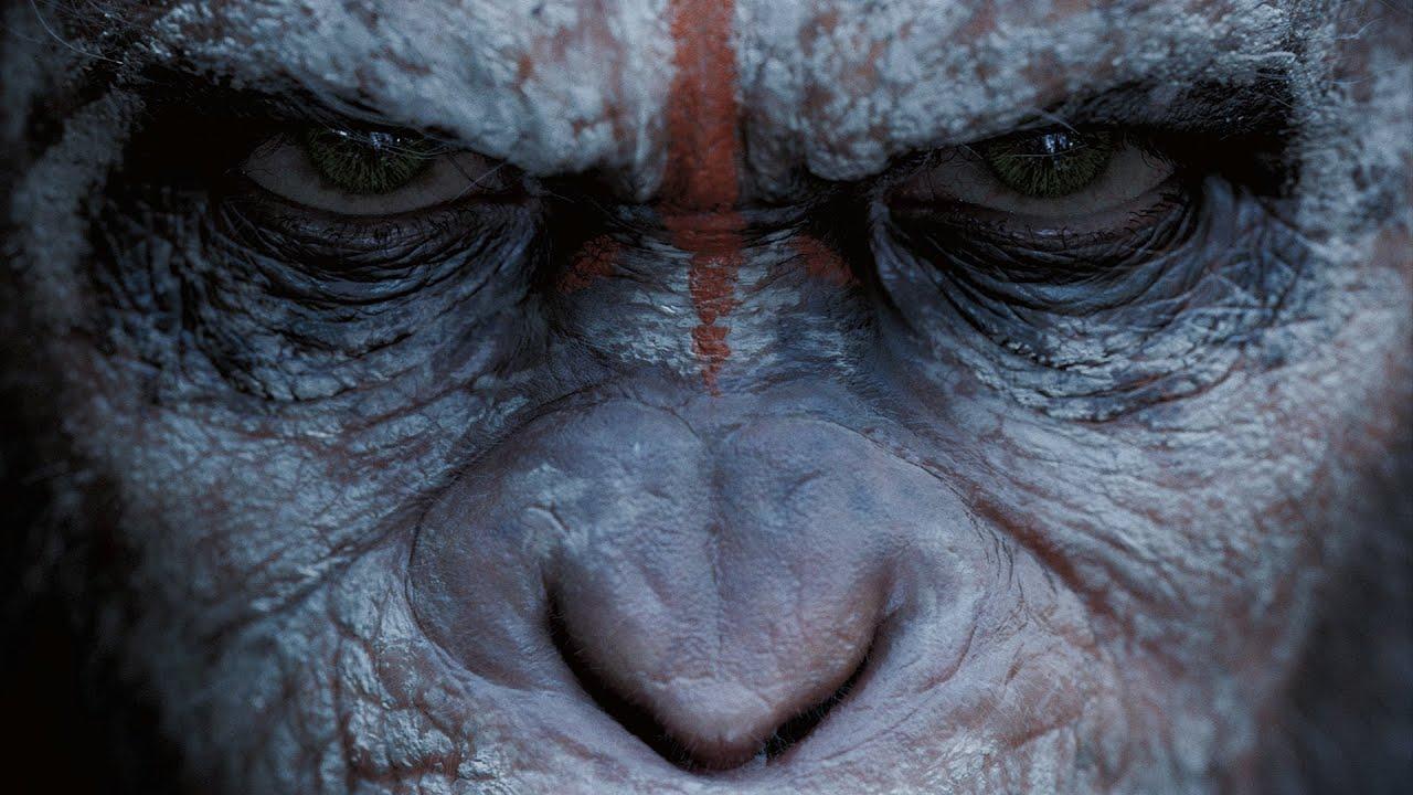 apes deutsch