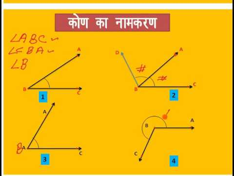 Alternate Interior Angles Meaning In Hindi Review Home Decor