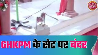 Monkey raises the entertainment quotient on the sets of 'Ghum Hai Kisikey Pyaar Meiin'