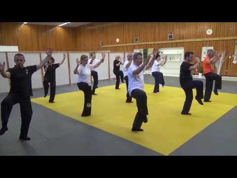 Wu style Tai Chi Chuan Chi Kung and form class