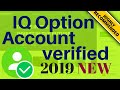 How to Trade on FX Option  IQ Option  Trade Theory - YouTube