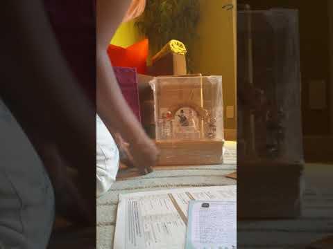 It's a Wooderful Life Wedding Music Box