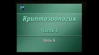 Криптозоология. Урок 1.6. Великий морской змей