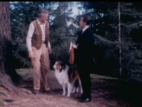"Lassie - Episode #414  - ""The Untamed Land"" - Season 12 Ep. 29 -  04/03/1966"