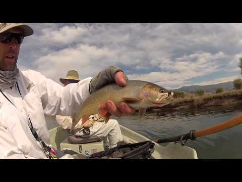 Salt river wyoming youtube for Wyoming out of state fishing license