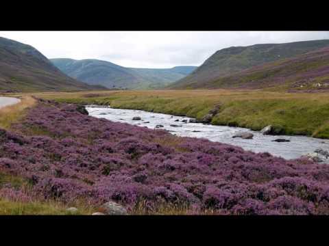 The Irish Tenors - Will Ye Go, Lassie, Go?