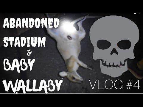 VLOG #4 // ABANDONED STADIUM & BABY WALLABY