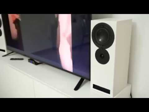 Building T-line 2 way speakers - transmission line