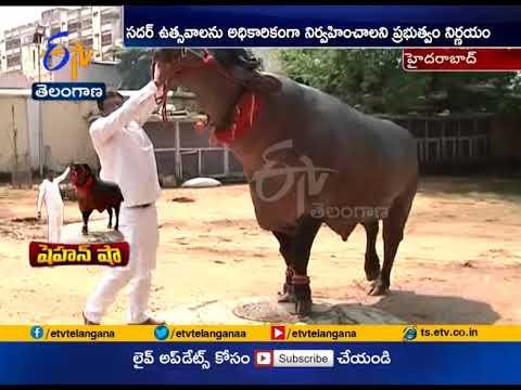 Buffalo Shahenshah to be Special Attraction in Sadar Celebration   Hyderabad