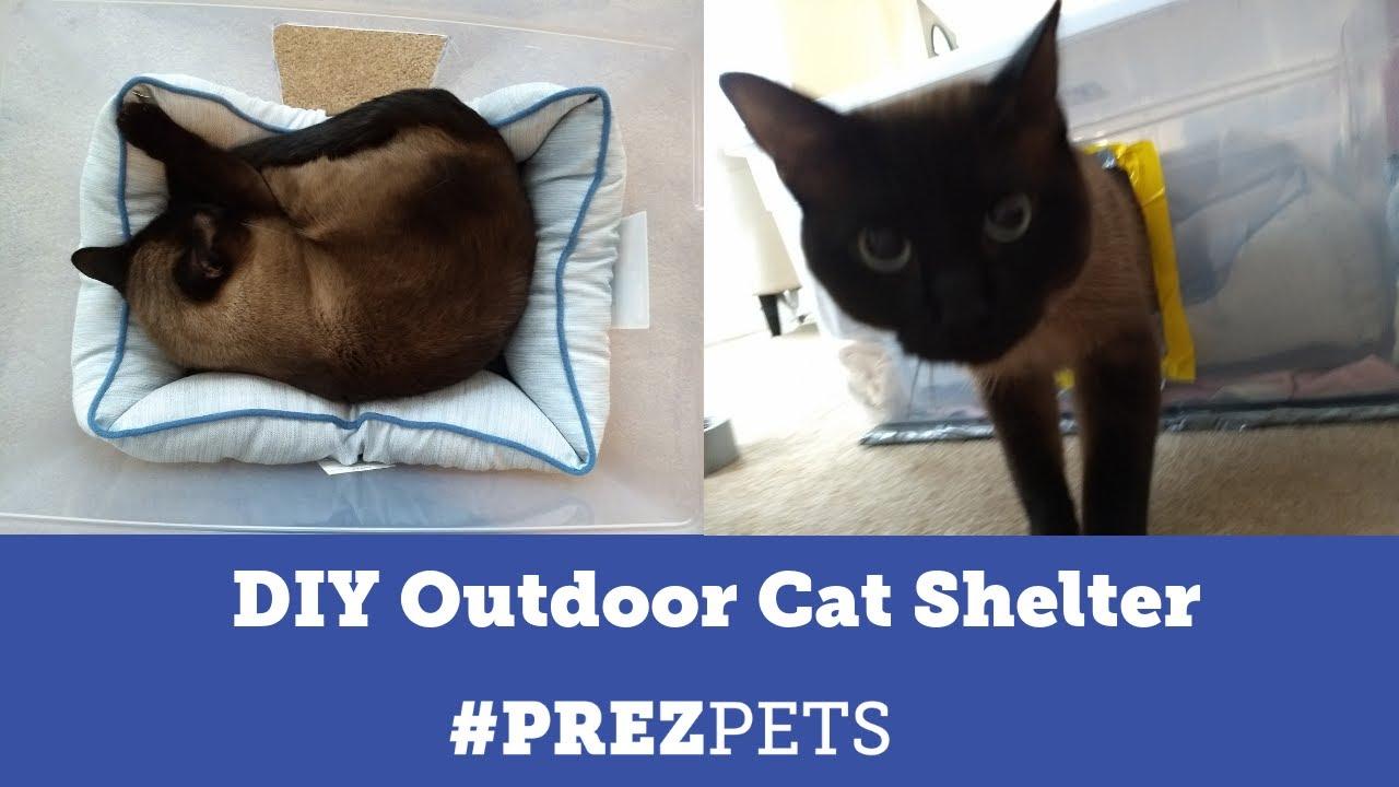 Diy Cat Shelter Presidential Pet Care
