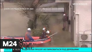 """Смотреть видео В Японии растет число погибших из-за тайфуна """"Хагибис - Москва 24 онлайн"""