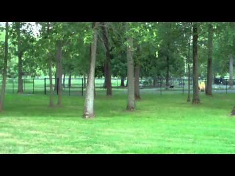 Onondaga Lake Park Video