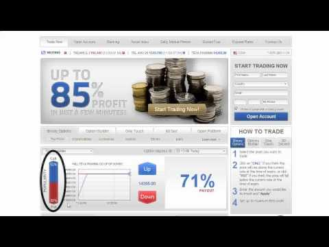 EA Forex - Best Review Source