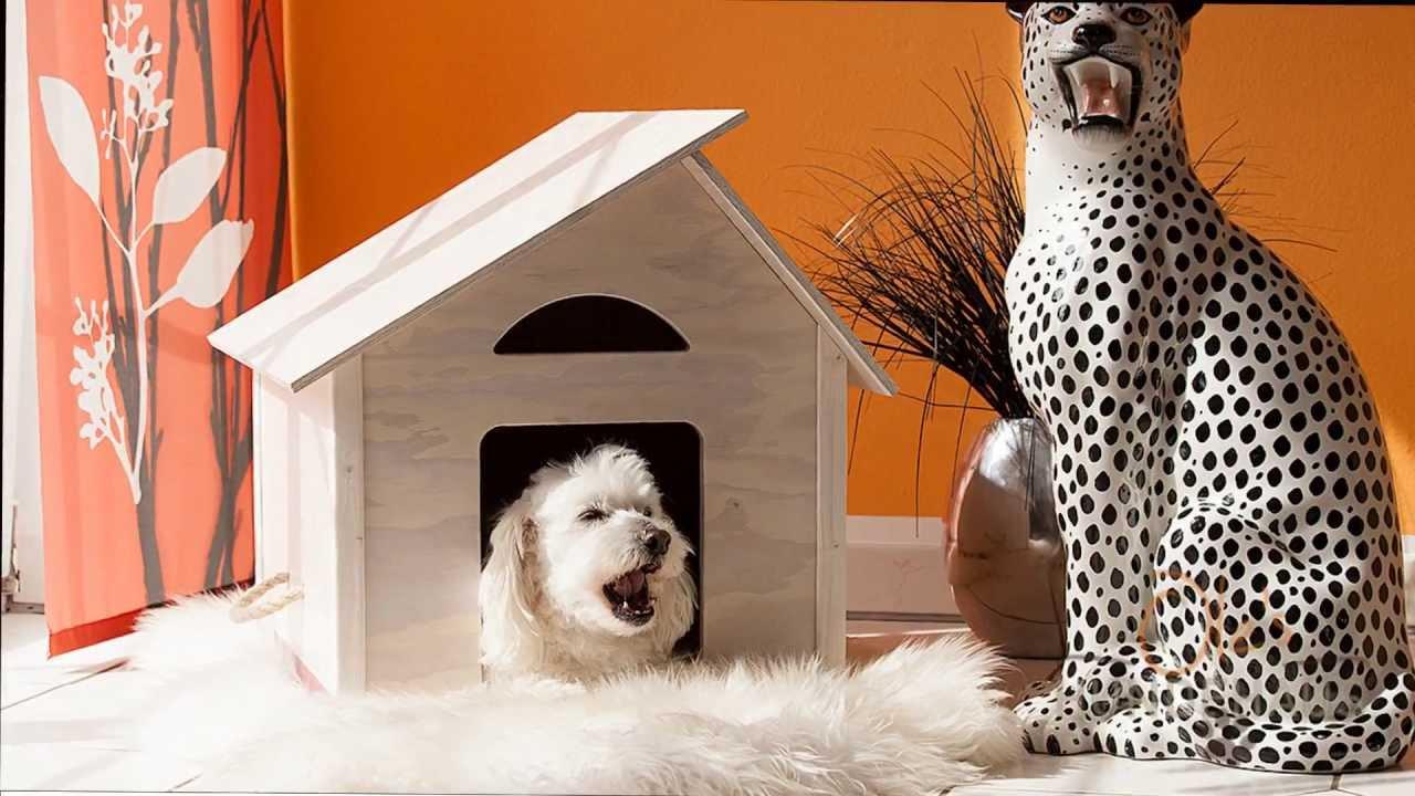 Hundehütte Für Drinnen : ole 39 s hundehaus die hundeh tte f r drinnen youtube ~ Michelbontemps.com Haus und Dekorationen